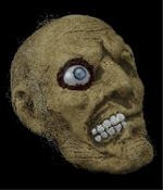 Severed Human Skull ONE-EYED JACK ROTTING ZOMBIE MUMMY HEAD with One Crazy Eye Just hanging around for fun! Slightly smaller than Life-size but no longer living rotten victim's head has straggly hair, awful smile and weird eye that you won't forget.