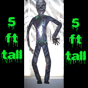 5ft Jointed Halloween Prop-WALKING DEAD-ZOMBIE-Wall Door Window Party Decoration