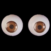 Life Size Creepy Cheap EYEBALLS EYES-BROWN-Gross Dimensional Novelty Doll Skeleton Monster Anatomy Body Parts-Halloween Haunted House Horror Prop Building Crafts. Zombie, Breaking Bad Teddy Costume Accessory. Doctor, Nurse, Optician, keep an eye out!