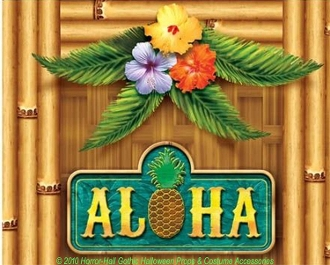 Luau Scene Setter Aloha Door Cover Wall Poster Party