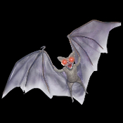 Gothic Horror Vampire Life Size LIGHT UP DEMON BAT Haunted House Halloween Prop Castle Mansion Decoration-Larger than Life Size-4 ft wingspan. Straight from the darkest cave of terror, this hanging bat has evil demonic glowing red lighted eyes.