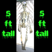 Life Size Jointed Cutout Anatomy Spooky SKELETON Skull Bones Gothic Halloween Decoration. Colorful Cardboard Hinged Fold-out is 5-feet tall! (152cm x 30cm) Graveyard, Cemetery, Dungeon, Horror Theme Scenery, Haunted House Decor Door Wall Window Mural