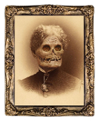 Huge DEMON AUNT HAZEL HOLOGRAPH PORTRAIT PRINT Haunted House Prop Halloween Decoration Wall Decor. Lenticular Gortrait of a harmless old lady turning into a rotting corpse before your eyes. Large Flicker Picture, antique-look frame, 17 x 21-inch.