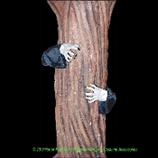 Creepy Life Size Realistic Poseable ZOMBIE HANDS ARMS TREE DECOR Haunted House Cemetery Graveyard Wrap Fence Post Hugger Halloween Prop Building Yard Decoration Cosplay Costume Accessory. Looks like a scary monster is reaching around to attack you!