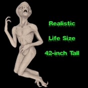 For huge science fiction fan or movie prop collector, this deluxe high quality Latex Roswell Martian LIFE SIZE ALIEN DEATH PROP will star in your collection, Halloween costume party or haunted house decoration. One of the most realistic UFO aliens!