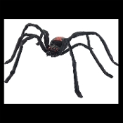 Big Creepy Black Widow Spider Halloween haunted house decoration. Scary prop for any party, can be placed indoor or outdoor. Plastic body with adjustable fabric covered wire legs. Spooky enough to add just the right touch to your cemetery graveyard.