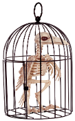 SKELETON RAVEN CROW in CAGE Dead Bird Halloween Prop Decoration