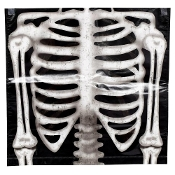 Gothic Skeleton Rib Bones Chair Covers Spooky Halloween Party Decorations. Creepy Halloween, Home Office, Classroom, Pirate Theme Birthday, Kitchen, Dining Decor. Surface Wipe-Able, Sturdy, Plastic-Coated Non-Woven Fabric. Indoor/Sheltered Outdoor.