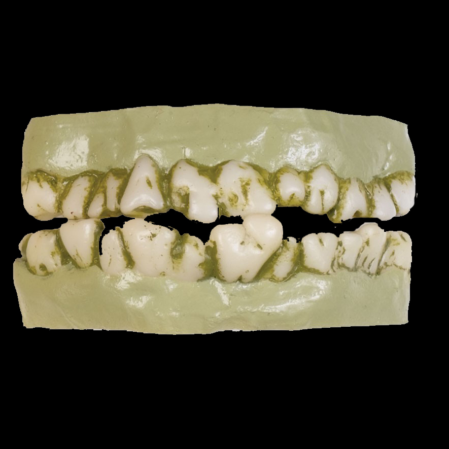 Brand New Zombie Walking Dead Decayed Teeth Accessory