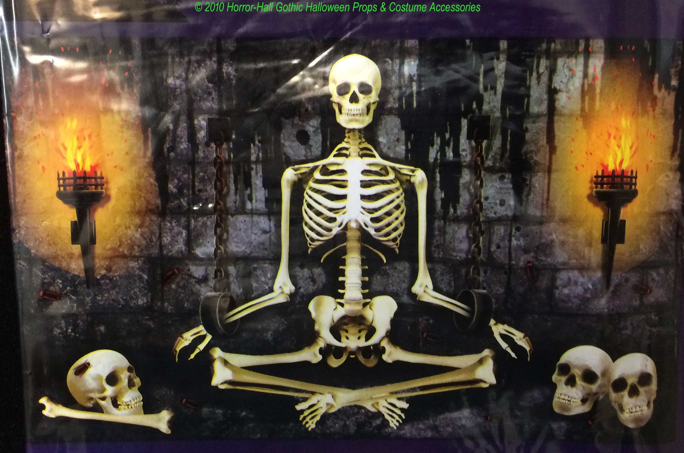 gothic torture chamber funny meditation dead guru dungeon yoga skeleton mural wall poster creepy horror garage